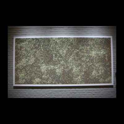 王宁德 有形之光——一片杨树(直射光)