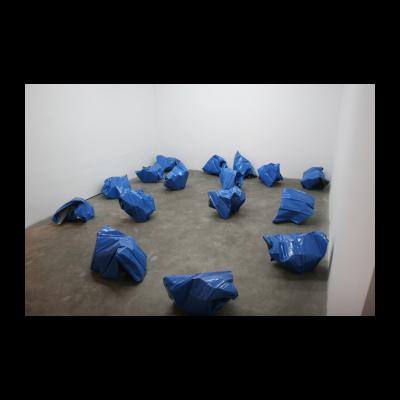 杨心广,蓝色彩钢瓦 13个部分,可变尺寸,2013