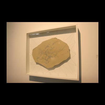 孙良,幽灵星辰,54×40,皮面油画,2013