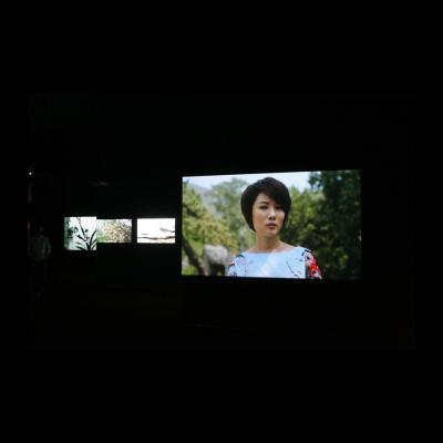 杨福东,《佚名·浅颜色》,14-16屏影像装置|颜色,8-10分钟,2014