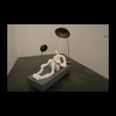 段建宇,《遗落在人间的珍宝》,2014