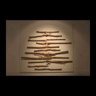 竹子,萧昱,2014