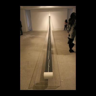 谭平,一画,2012