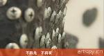 五人个展(视频)