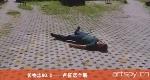 长物志NO.2——卢征远个展(视频)