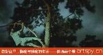 歇斯底里,隐喻与转喻的生活——陈晓云个展(视频)