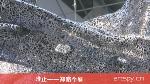 唯止——郑路个展(视频)